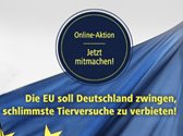 https://berner-sennenhunde-nothilfe.de/wp-content/uploads/2019/03/3-1.jpg