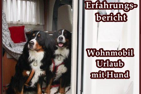 Wohnmobil-Urlaub mit Hund